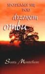 Spotkamy się pod drzewem ombu - Santa Montefiore