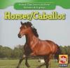 Horses - JoAnn Early Macken