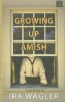 Growing Up Amish - Ira Wagler