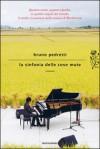 La sinfonia delle cose mute - Bruno Pedretti