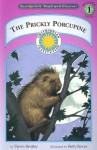 The Prickly Porcupine - Dawn Bentley