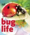 Bug Life - Lynette Evans, Francesca D'Ottavi