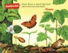 How Does a Seed Sprout?: And Other Questions About Plants - Melissa Stewart