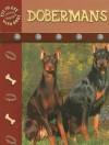 Doberman Pinschers (Eye To Eye With Dogs) - Lynn M. Stone