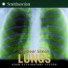 Lungs: Your Respiratory System - Seymour Simon