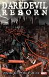 Daredevil: Reborn - Davide Gianfelice, Andy Diggle