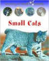 Small Cats - Sally Morgan