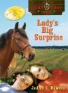 Ladys Big Surprise - JoAnn S. Dawson