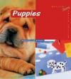 Puppies - Barron's Educational Series, Norbert Landa