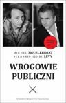 Wrogowie publiczni - Bernard-Henri Levy, Michel Houellebecq
