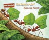 How Strong Is an Ant?: And Other Questions about Bugs and Insects - Mary Kay Carson, Carol Schwartz