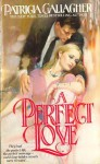 A Perfect Love - Patricia Gallagher