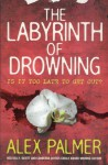 The Labyrinth of Drowning - Alex Palmer