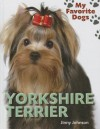 Yorkshire Terrier - Jinny Johnson