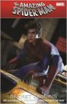 Amazing Spider-Man: Secret Origins - Stan Lee, Paul Jenkins, Steve Ditko, Gil Kane, Mark Buckingham