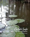 Caddo Lake: water, light and atmosphere - Duane Johnson