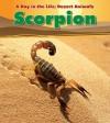 Scorpion - Anita Ganeri