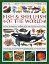 The Illustrated Encyclopedia of Fish & Shellfish of the World: A Natural History Identification Guide to the Diverse Animal Life of Deep Oceans, Open Seas, Reefs, Estuaries, Shorelines, Ponds, Lakes and Rivers Around the Globe with 1700 Illustrations, - Daniel Gilpin, Amy-Jane Beer, Derek Hall