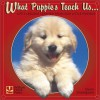 What Puppies Teach Us: Life's Lessons Learned from Our Little Friends - Glenn Dromgoole, Andrea Donner