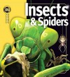 Insects & Spiders - Noel Tait