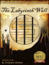 The Labyrinth Wall (Obsidian Series) - Emilyann Girdner, Nicole Zoltack, James Allen Sr.
