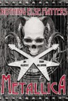 Nothing Else Matters: Metallica: The Graphic Novel - Jim McCarthy, Brian Williamson