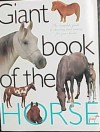Giant Book of the Horse - chartwell books, Lin Esposito