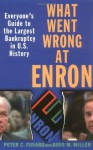 What Went Wrong at Enron: Everyone's Guide to the Largest Bankruptcy in U.S. History - Peter C. Fusaro, Ross M. Miller