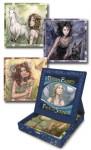 Dream Fairies Inspirational Cards - Bianca Luna, Julia Jeffrey