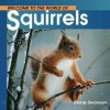 Welcome to the World of Squirrels - Diane Swanson