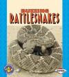 Buzzing Rattlesnakes - Ruth Berman