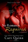 No Romance Required - Cari Quinn