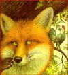 The Fox and the Rooster (Little Dipper Books) - Charles Santore