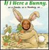 If I Were a Bunny: Or a Panda, or a Monkey - Deborah D'Andrea