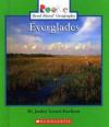 Everglades - Janice Leotti-Bachem