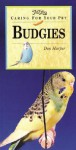 Budgies - Don Harper