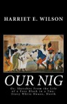 Our Nig; Or, Sketches from the Life of a Free Black in a Two-Story White House, North - Harriet E. Wilson