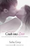 Crash Into Love (Entangled Indulgence) - Sofia Grey