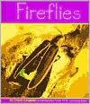 Fireflies - Cheryl Coughlan, Helen Frost, Gail Saunders-Smith