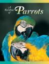 A Rainbow of Parrots - Vicki León