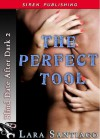 Perfect Tool - Lara Santiago