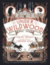 Under Wildwood: The Wildwood Chronicles, Book II (Wildwood Trilogy) - Colin Meloy, Carson Ellis