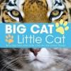 Big Cat, Little Cat. - Lisa Regan