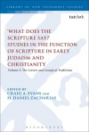 'What Does the Scripture Say?' Studies in the Function of Scripture in Early Judaism and Christianity: Volume 2: The Letters and Liturgical Traditions - Craig A. Evans, H. Daniel Zacharias