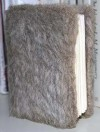 Little Fur Family - Margaret Wise Brown