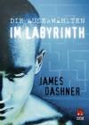 Die Auserwählten - Im Labyrinth (Maze Runner, #1) - James Dashner, Anke Caroline Burger