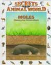 Moles: Champion Excavators - Eulalia Garcia