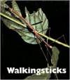 Walkingsticks - Patrick Merrick