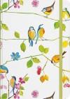 JOURNAL: Watercolor Birds Journal - NOT A BOOK