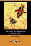 Birds in Town and Village - William Henry Hudson